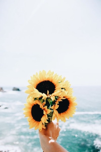 un bouquet de tournesol