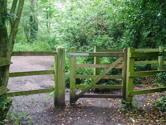 The gate leading to Gobions Open Space, including Gobions Pond