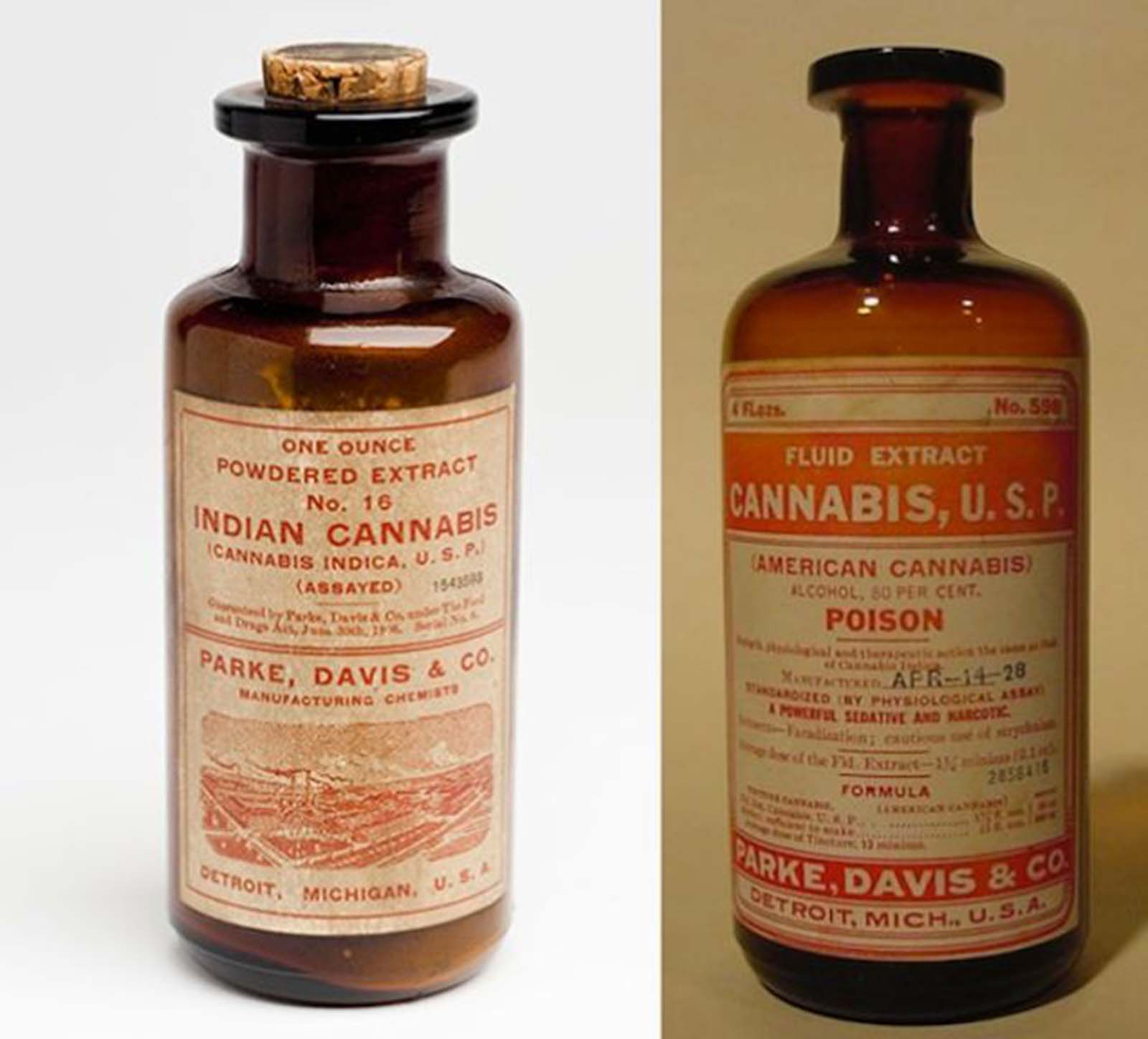 Indian and American Cannabis. This was also used for pain relief, but it doubled as a tonic for coughing, sleeplessness, and loss of appetite.