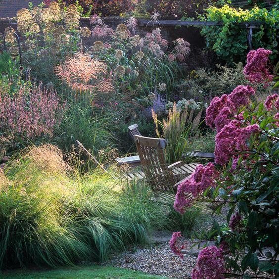 flori perene, plante gradina, plante ornamentale grupuri, cum plantez gradina, ce plante pun in gradina, peisagist, firma plantare flori