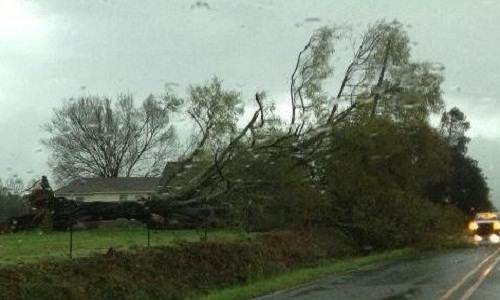 Storm_damage_WassonRd_Arkansas