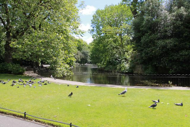 Dublinin puistot ja leikkipaikat