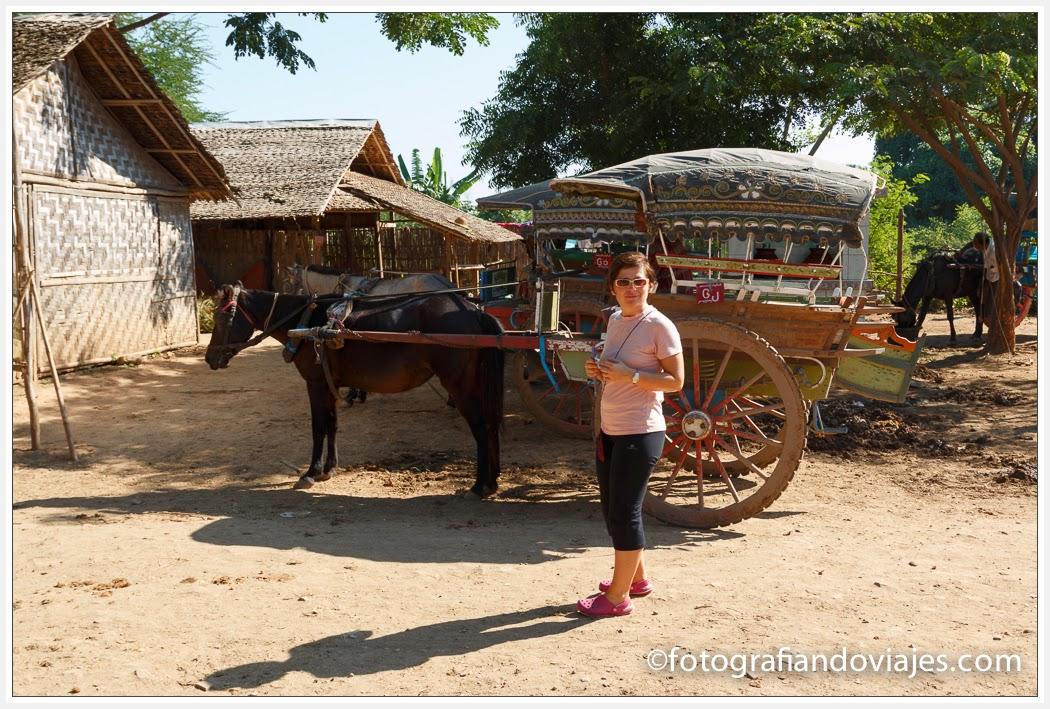 coche de caballos en Inwa