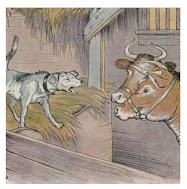Dongeng Anjing di dalam Kandang Kerbau (Aesop) | DONGENG ANAK DUNIA