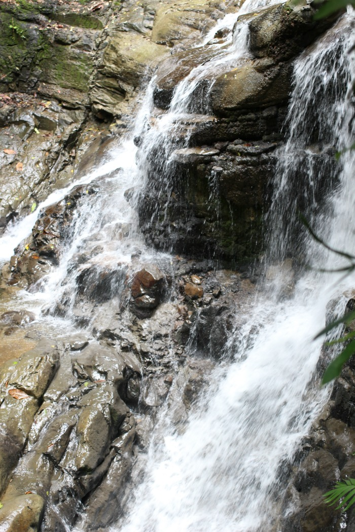 two-tiered Puma Waterfall on costa rica tour