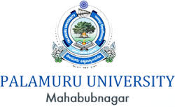 Palamuru University Results 2020