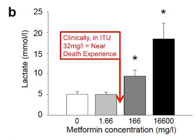metformin research paper Research article formulation of extended- release metformin hydrochloride matrix tablets basavaraj k nanjwade, sunil .
