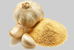 benefits of garlic powder for dogs, benefits of garlic powder for dogs, benefits of garlic powder on hair, uses of garlic powder in cooking, health benefits of garlic powder, health benefits of dry garlic powder