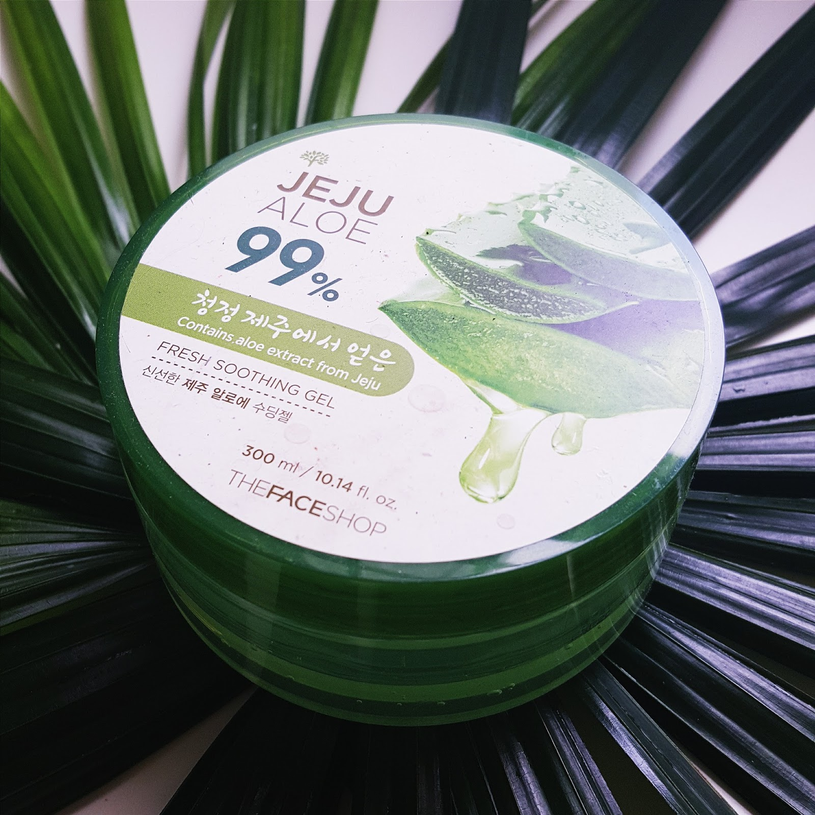 The Face Shop Jeju Aloe 99 Fresh Soothing Gel Review Fishmeatdie K Beauty Vera Shooting Nature There Are A Few New Ones That I Saw Came In Tube Form Tub To Me Just Seems Bit Unhygenic Right Now But For Much Amount Of