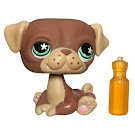 Littlest Pet Shop Singles Pug (#889) Pet