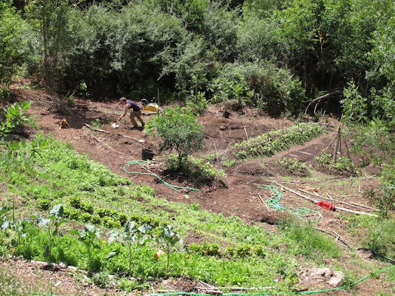 Granja ecosocialista Xardín do Cernunnos, Galicia, Espanha.jpg