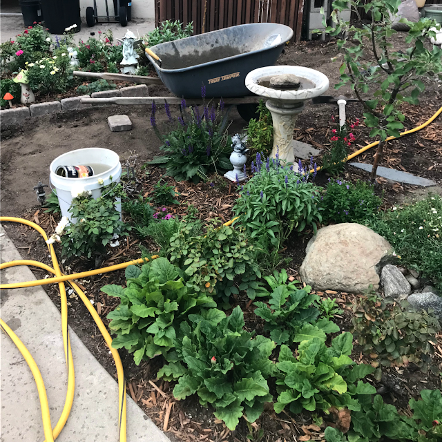 Back Yard Potager: PROGRESS ON THE POTAGER GARDEN - Cottage Garden
