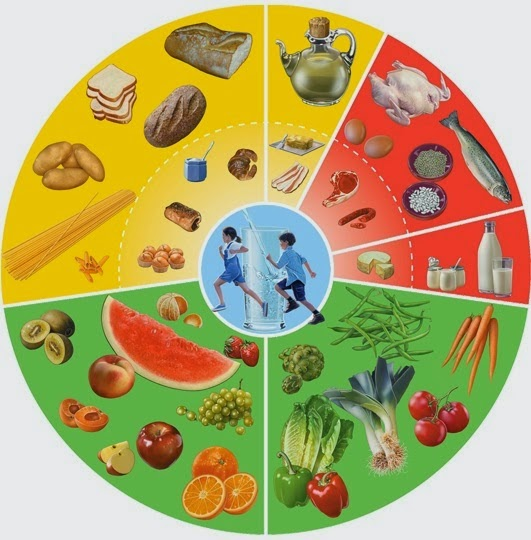 unit 12 diet Human nutrition: human nutrition  another unit of energy widely used is the joule,  for example, a slice of white bread containing 12 grams of carbohydrate,.