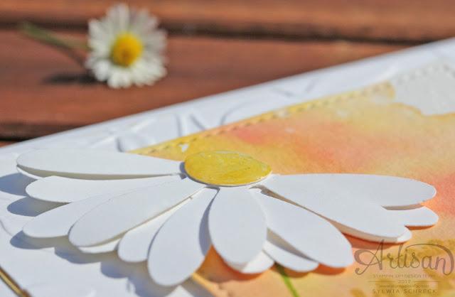 Stampin up-Gänseblümchen-Daisy