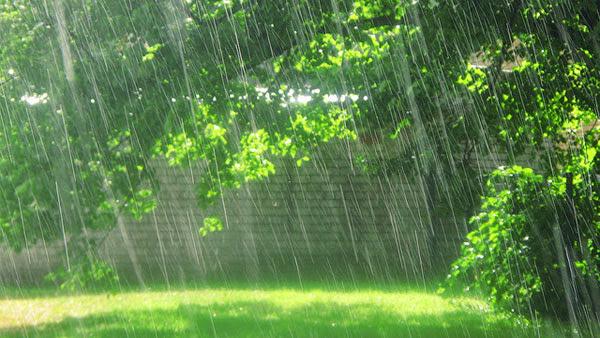 الآثار السلبية للأمطار الحمضية في البيئة و علاج المشكلة