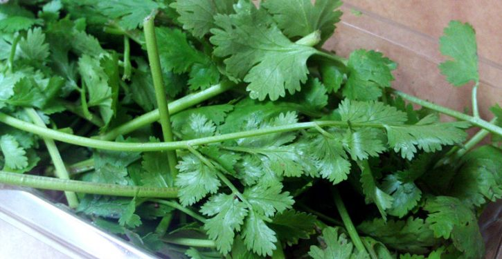 This Coriander Recipe Removes 80% Of Heavy Metals From The Body In 42 Days