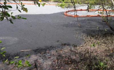 Candeias: vazamento de óleo causa danos ambientais
