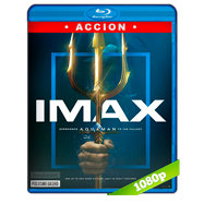 Aquaman (2018) IMAX PLACEBO Full HD 1080p Latino