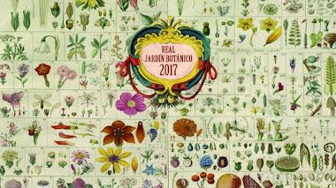 Dibujos chinos de la colección Van Berkhey en el calendario 2017 del Real Jardín Botánico