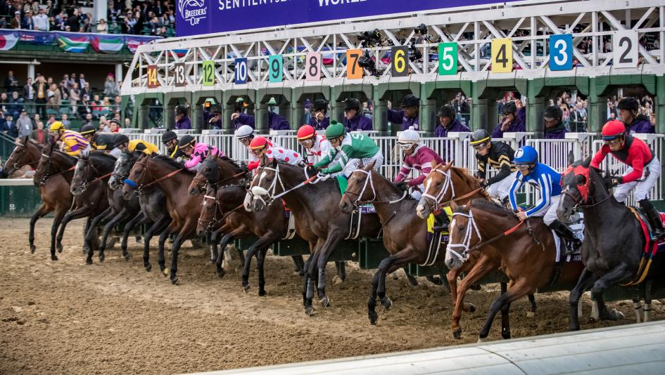 Breeders' Cup race start