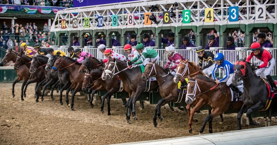 Hollywoodbets Sports Blog Breeder S Cup 2019 Day 1