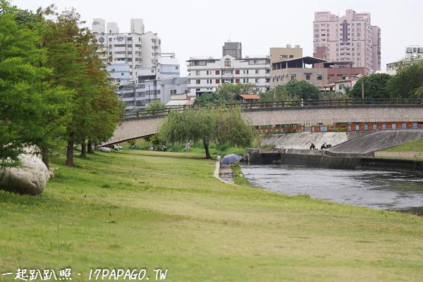 《台中.大里》興大康橋-景觀橋、人工濕地、木棧道,鳶尾花,大里最美河畔