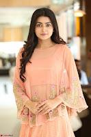 Avantika Mishra Looks beautiful in peach anarkali dress ~  Exclusive Celebrity Galleries 068.JPG