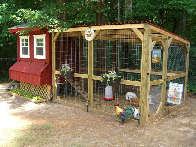 DIY Chicken Coops You Will Love