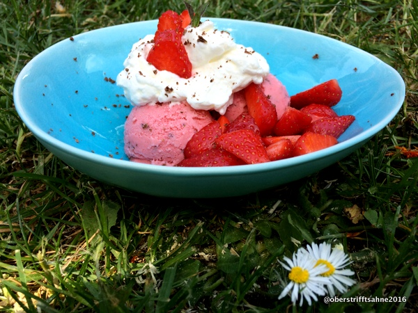 Erdbeer-Joghurt Eis mit Minze und Schokolade