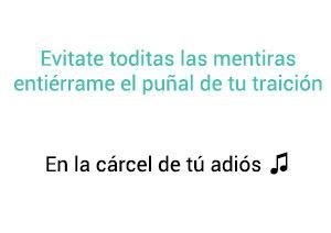 Vicente Fernández Chente En La Cárcel de Tú Adiós significado de la canción.