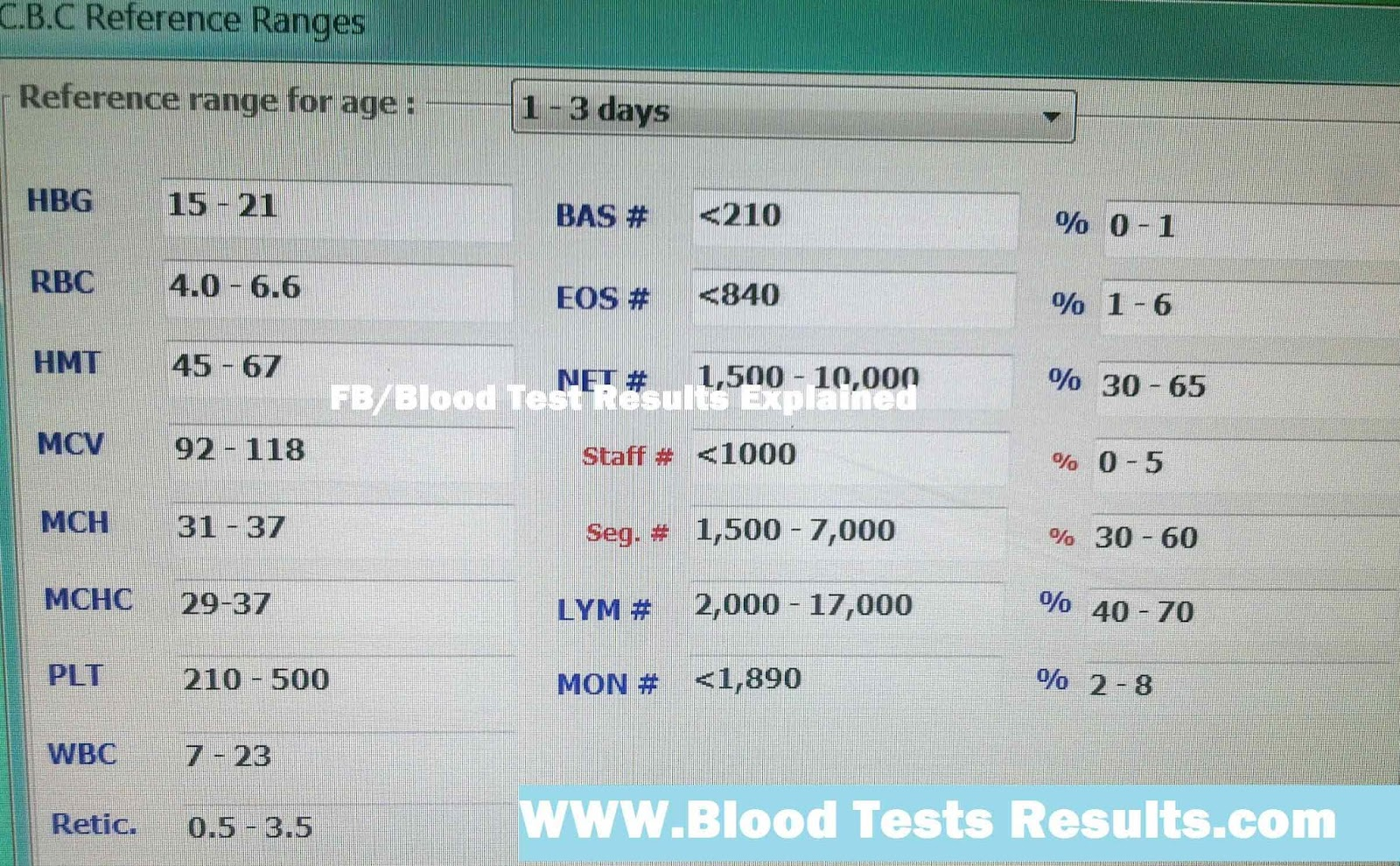 what does abs mono blood test mean