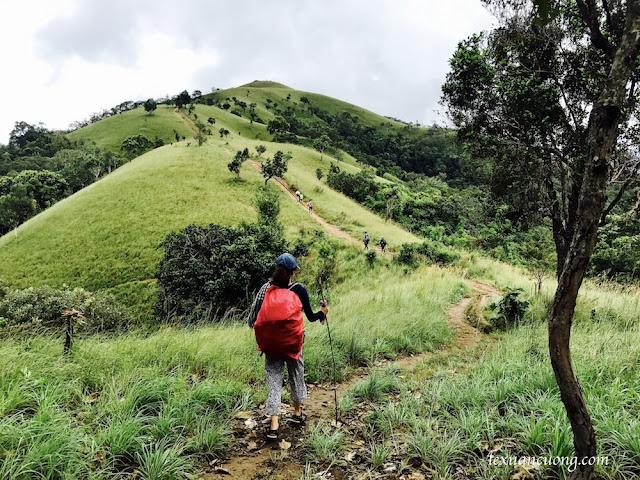 Cung đường trekking Tà Năng - Phan Dũng hấp dẫn