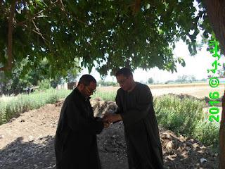 الحسينى محمد , الخوجة, بركة السبع,المنوفية,التعليم,المعلمين,فوائد أكل التوت,التوت,العلاج الطبيعى