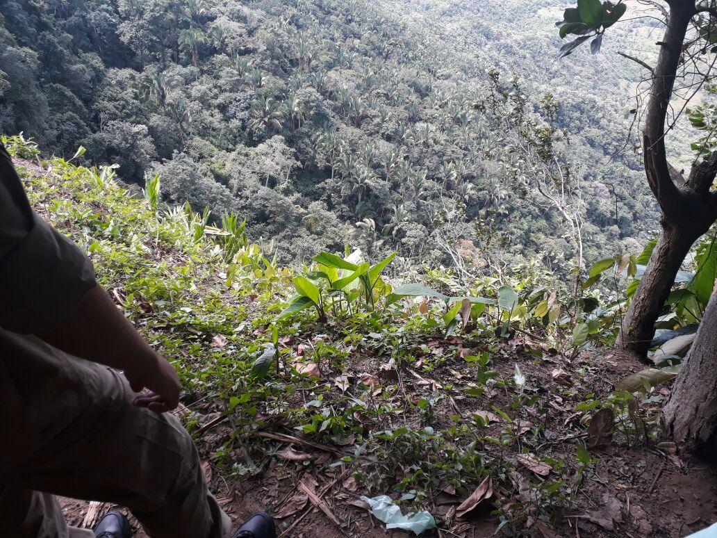 Homem morre após cair de abismo em Ubajara