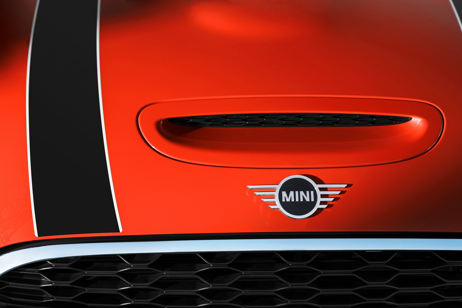 MINI-335.jpg