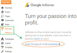 AdSense account not approved
