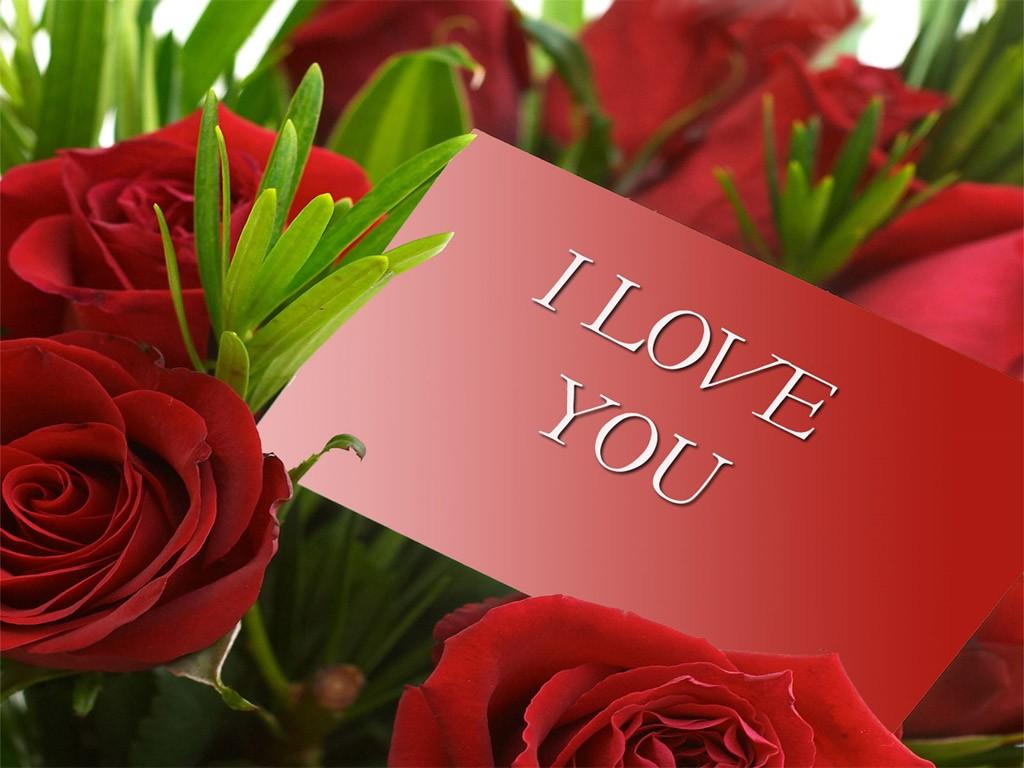 Poklon za dan zaljubljenih - 5 8