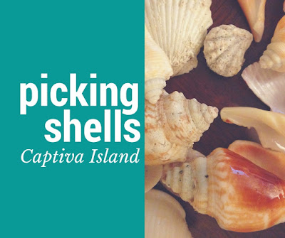 Picking shells in Captiva