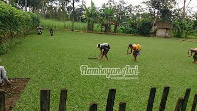 Jasa Tukang taman Surabaya Jual Rumput Taman
