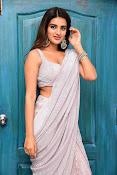 Nidhi Agarwal at Ismart Successmeet-thumbnail-19