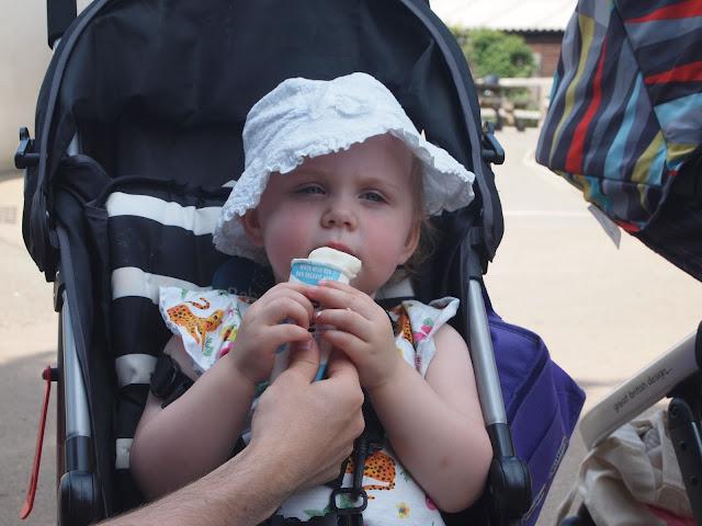 Godstone Farm, Surrey Review - Food & Drink - Ice cream