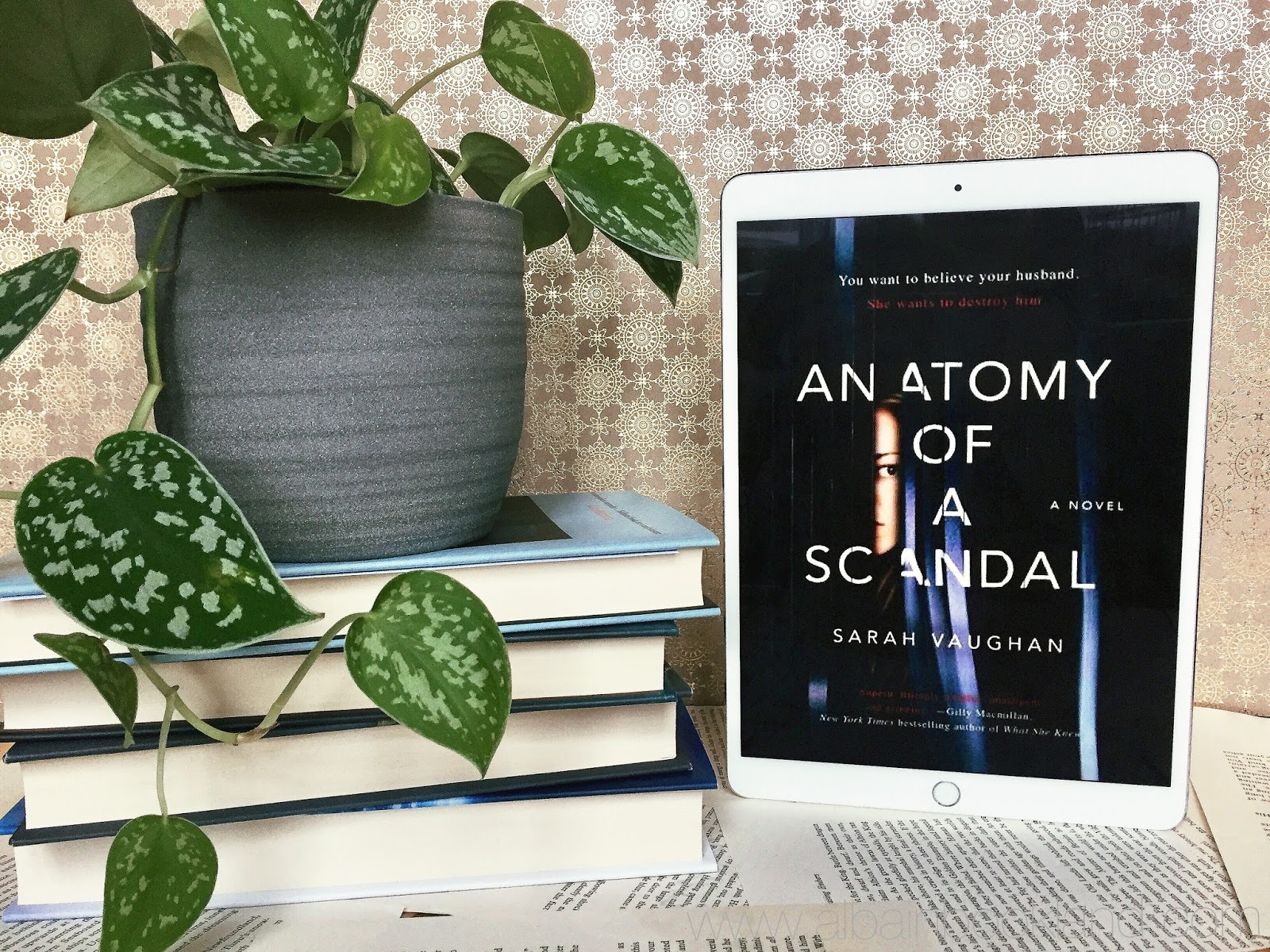 Book Review: Anatomy of a Scandal by Sarah Vaughan - Alba in bookland