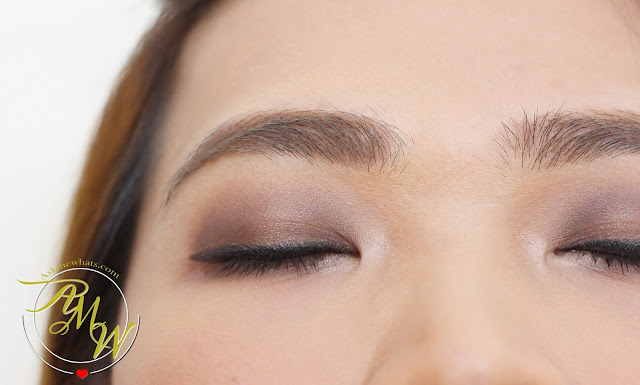a photo of Poise Makeup Professional MIneral Pressed Eye Color Taupe and Coco