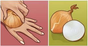فوائد البصل ووصفات منه ستجعلك تحبه أكثر وأكثر وتستخدمه كثيراً في هذه الأشياء
