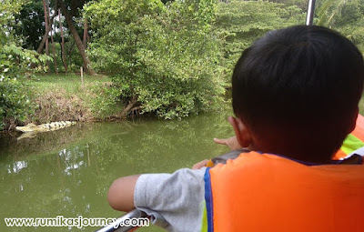naik perahu di faunaland