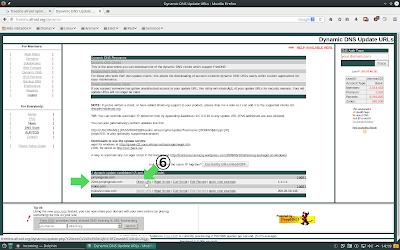 Web FreeDNS