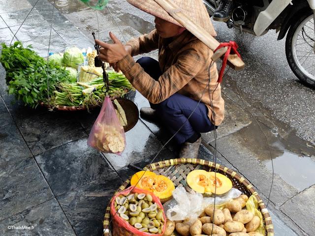 marchand de rue hanoi vietnam