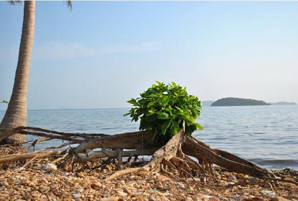 Du lịch biển Kiên Giang với 4 thiên đường-13