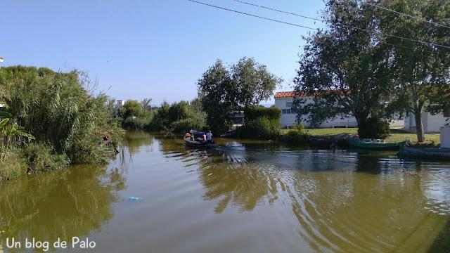 Zona de arrozales y embarcadero