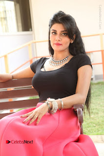 Telugu Actress Harini Stills at Dhyavudaa Movie Teaser Launch  0264.JPG